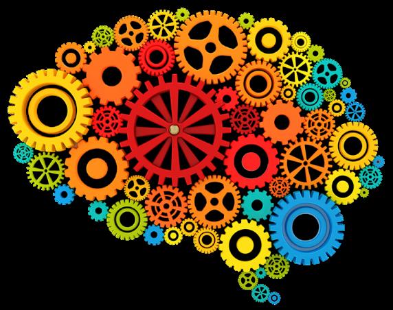 webhomes-brain-gear